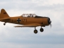 2011 IG-Warbird